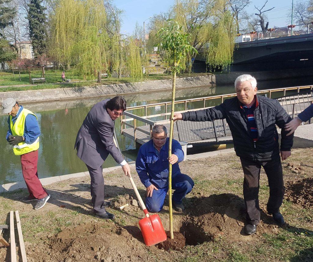 Viceprimarul Ruben Lațcău îi cere demisia directorului de la Horticultura