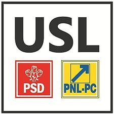 Alianța PNL-PSD funcționează șnur la Timișoara